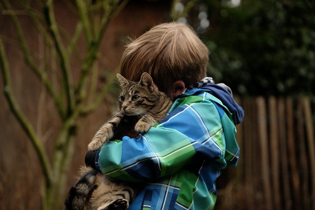 Papa, vull una mascota!