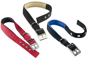 Daytona collar (6 tallas (15 - 69 cm) 6 colors